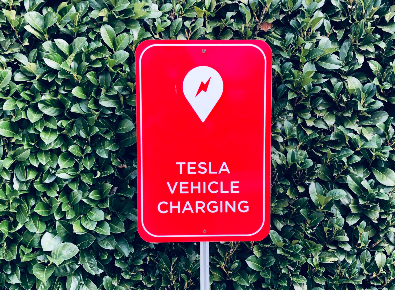 Tesla is hiring for its China energy business-cnTechPost