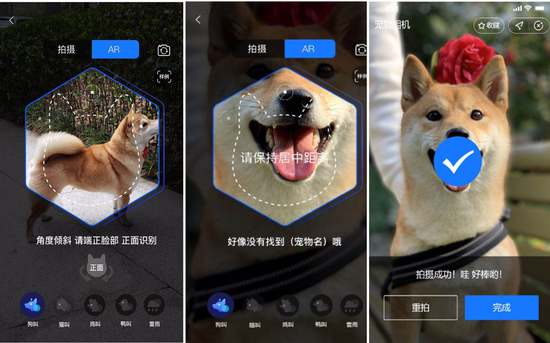 Alipay's pet nose-print recognition technology allows owners to insure their cats and dogs-cnTechPost